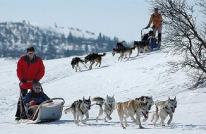 Alternative au ski pendant les vacances d'hiver