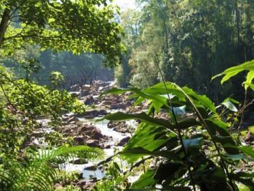 Les meilleurs coins naturels du Sri Lanka