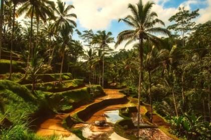 Passer un séjour inédit lors d'un voyage en Indonésie