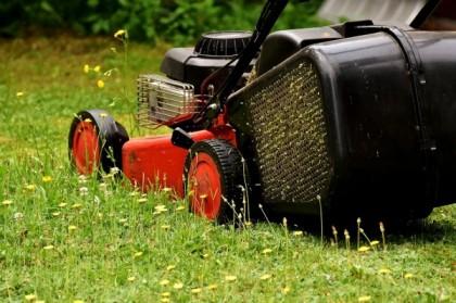Apprenez à tondre votre pelouse efficacement