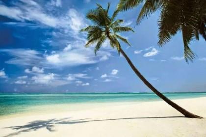 La Guadeloupe : une destination de rêve à ne pas manquer