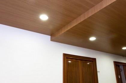 Réalisez vos travaux de rénovation avec des plafonds
