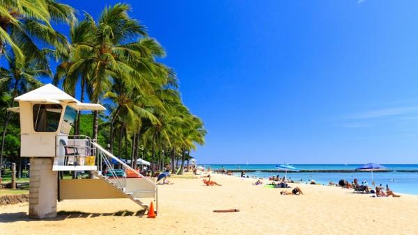 La période idéale pour découvrir Hawai