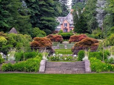 Embellir vos espaces verts avec des travaux d'élagage