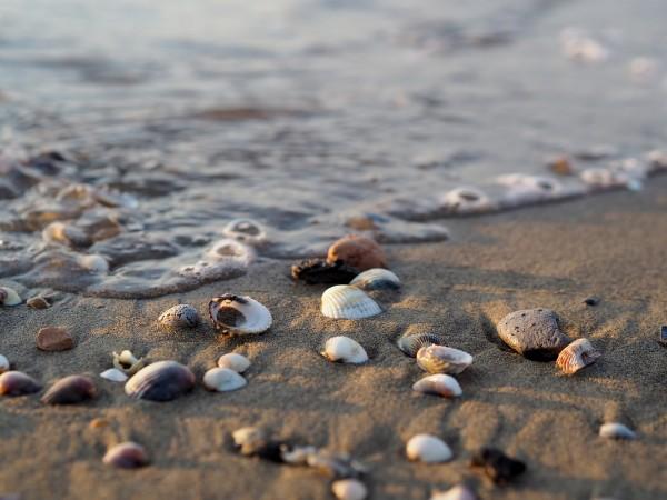 Plage de Bibione, un joyau italien sur la mer Adriatique