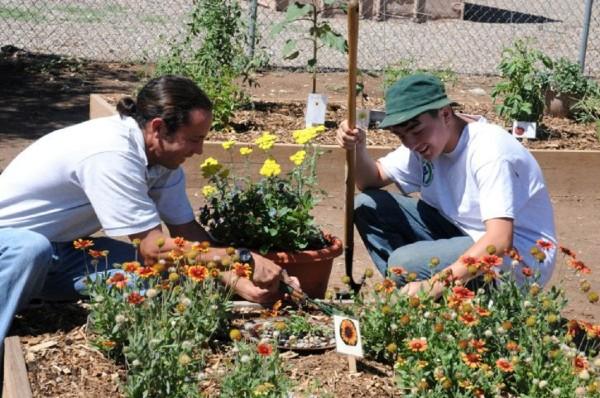 Les termes habituels qui sont nécessaires pour le jardinage
