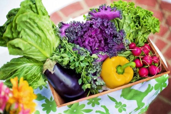 Comment conserver vos légumes pendant tout l'hiver ?