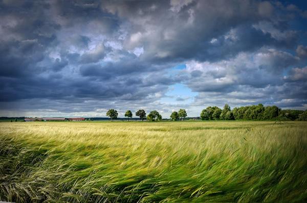 Environnement : Connaissez-vous la géopractie?