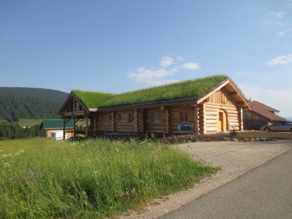 Tout sur l'entretien de la toiture végétalisée