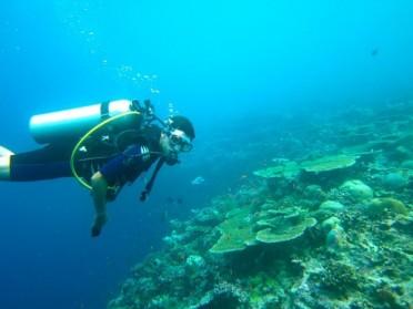 Où plonger lors de vos vacances aux Maldives?