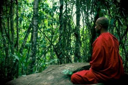 Le Sri Lanka, un paradis pour le tourisme de santé