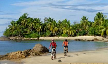 Explorer les richesses d'une île comme Madagascar !