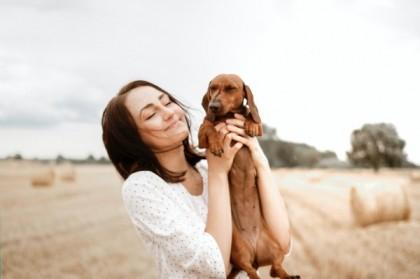 Bien s'occuper de son chien : hygiène et entretien