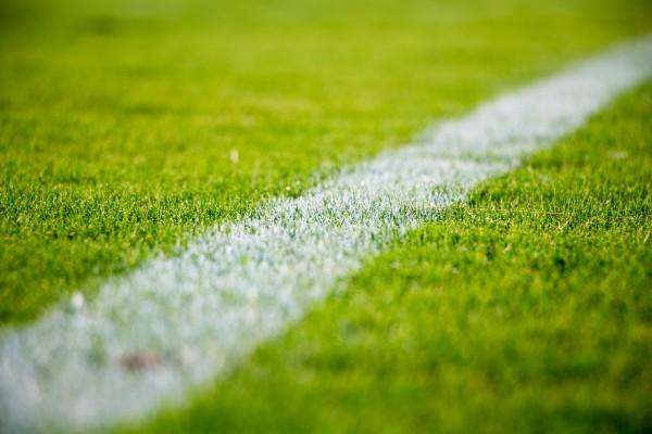 Paris sportifs professionnels : découvrez comment gagner