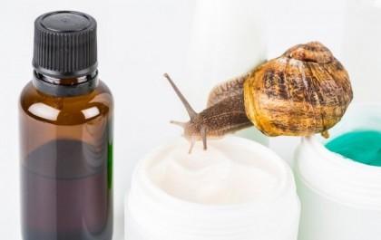 La bave d'escargot : quel produit pour ma peau ?